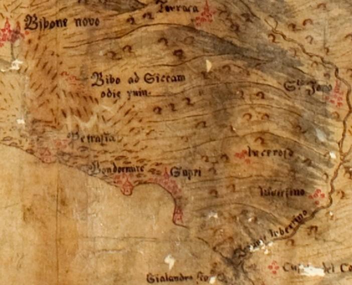 Piante e Disegni, cartella XXXII, conv. 4
